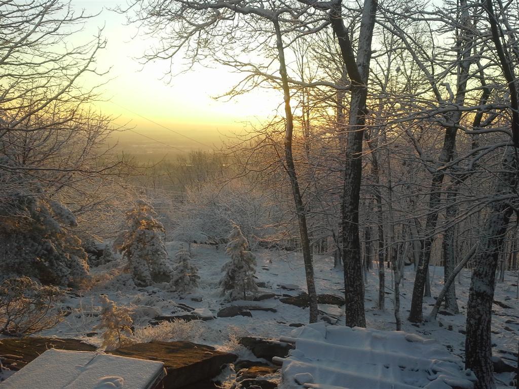 snowysunrise3