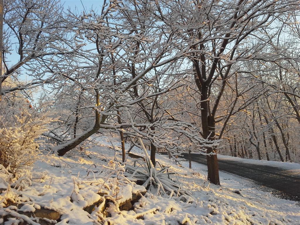 snowysunrise7