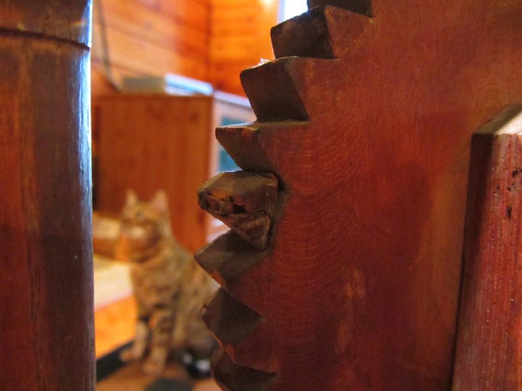cats_reel3