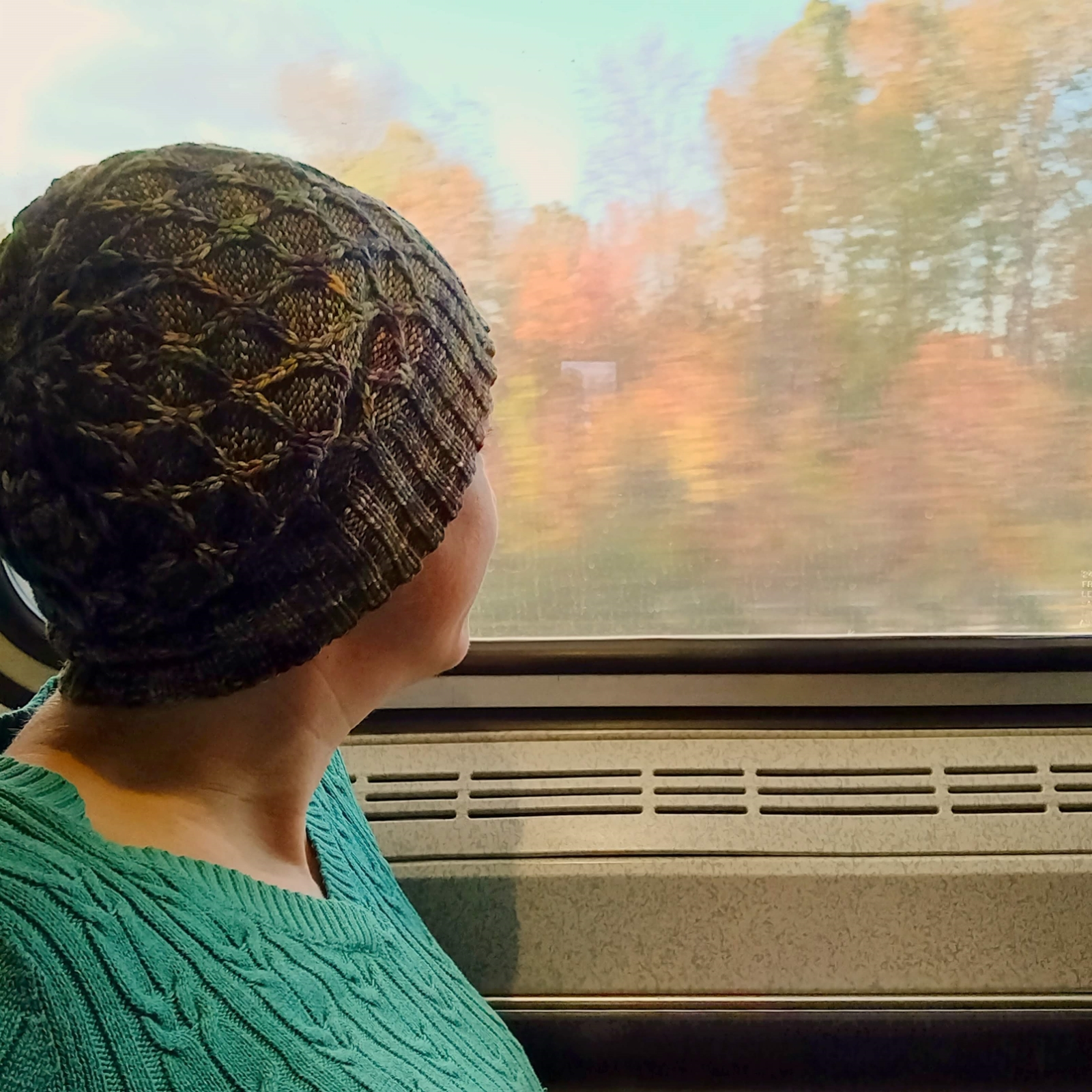 Pirate, wearing the new Passing Days hat, looking out the window of a moving train at autumn leaves.